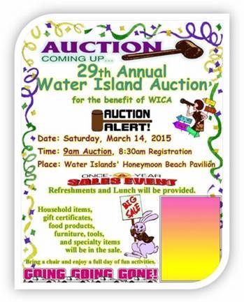 2015 Auction Flyer.jpg